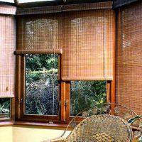 bambus_73